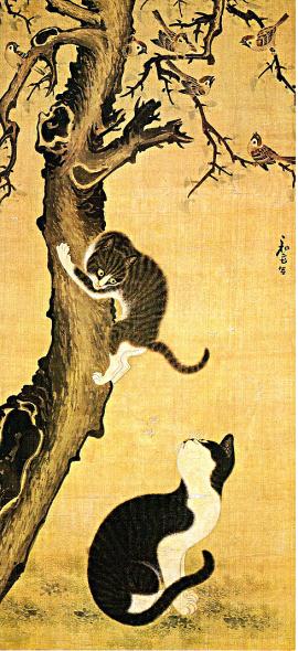 Gatti che giocano arte coreana